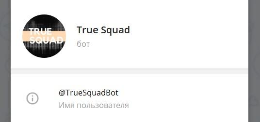 Телеграмм True Squad